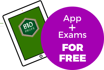 App + Exams For Free